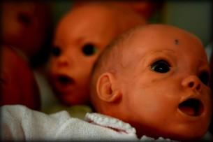 babyfarmtwo